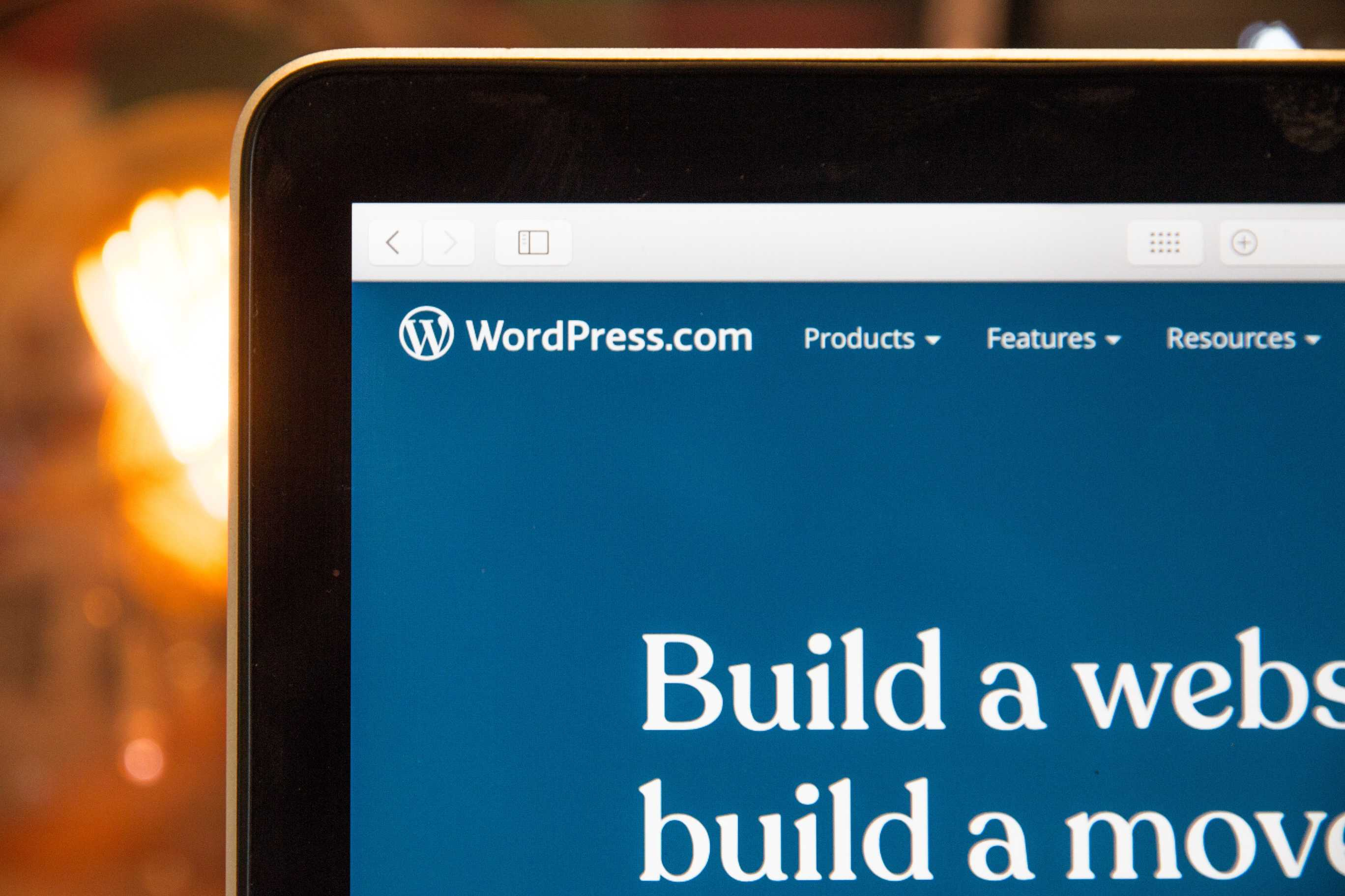 New to WordPress? Here's What You Need to Know